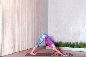 Асани йоги для зміцнення імунітету 6