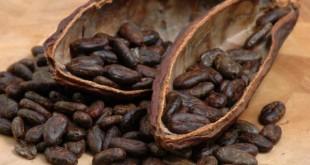 Маски для волосся з кавою