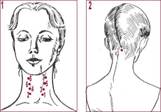 Масаж для збільшення грудних залоз різновиди і особливості його виконання 1