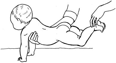 Гімнастика для дітей 9-12 місяців 2