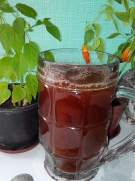 Квас рецепт з бузини – тонкощі закваски напою