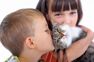 Домашні тварини для дітей - як правильно вибрати