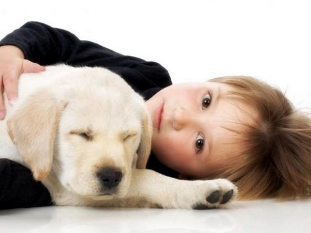 Собака для дітей – яку поробу вибрати