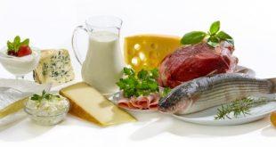 Білкова їжа - для схуднення і здорового харчування