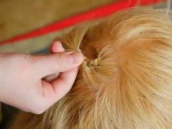 Зачіски на волосся. Як зробити об'ємні зачіски 21
