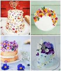 Рецепти літніх тортів. Готуємо легкі літні торти 3