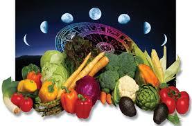 Місячний календар городника на грудень 2017 року