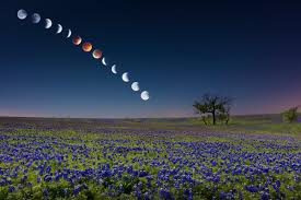 Місячний календар краси на березень 2018 року
