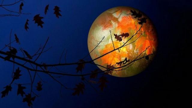 Місячний календар городника на жовтень 2018 року