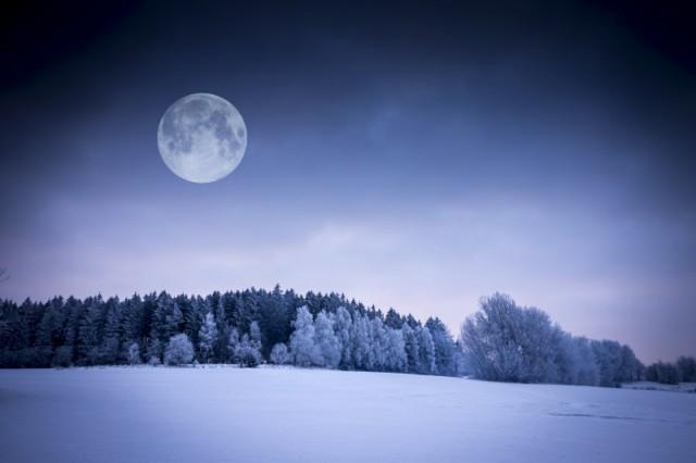 Місячний календар городника на січень 2019 року
