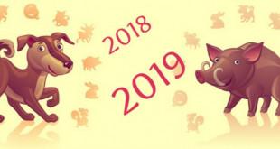 Сценарій на новий 2019 рік. Цікава та корисна підбірка