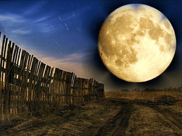 Місячний календар на квітень 2019 року. Що можна робити в квітні