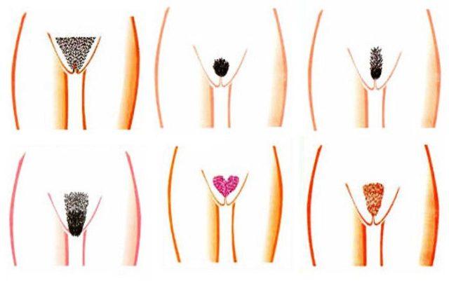 Інтимні стрижки. Підбірка жіночих інтимних стрижок