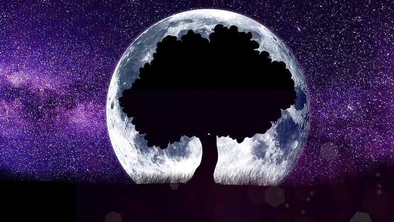 Місячний календар дієти на жовтень 2019 року
