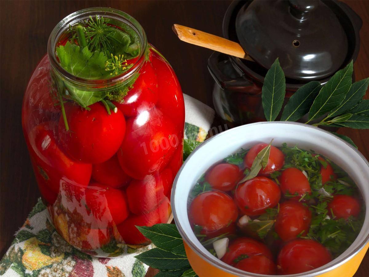 Квашені помідори швидкого приготування. Підбірка рецептів