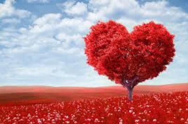 Фільми на День святого Валентина. Романтична підбірка